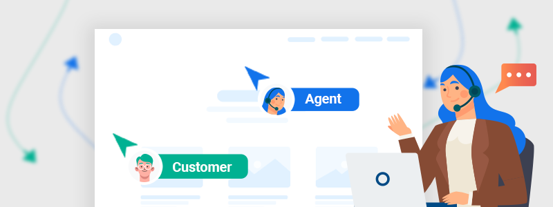 Agent co-browsing with customer