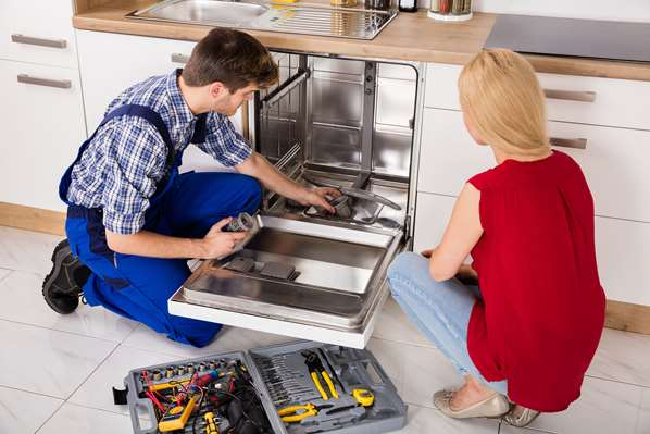 Dishwasher repairman and customer