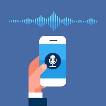 Voice recognition handset