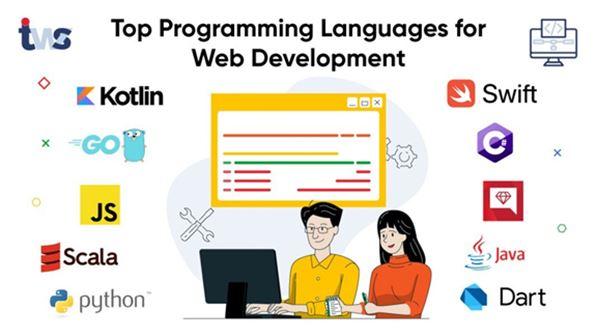 Top Programming Language for Web Dev
