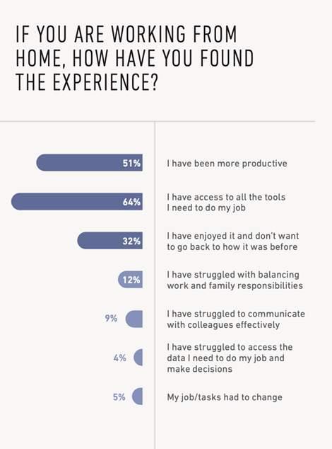 Remote work experience survey